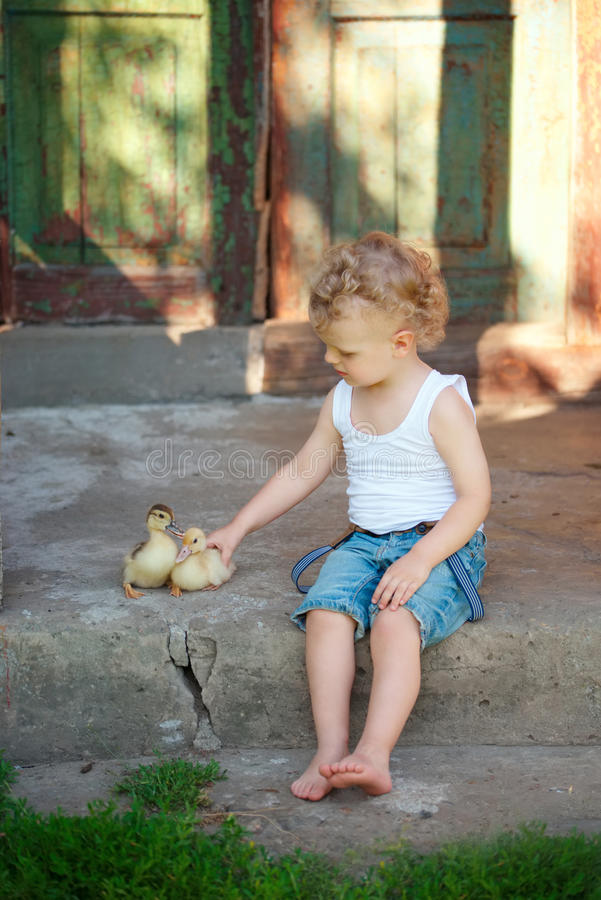 Boy with little yellow duckling in summer village stock photo