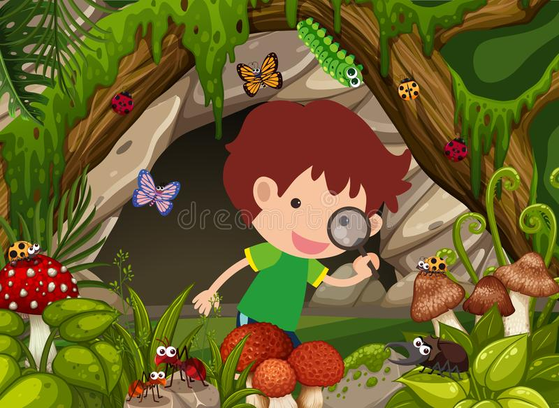 Boy looking at insects in the forest royalty free illustration