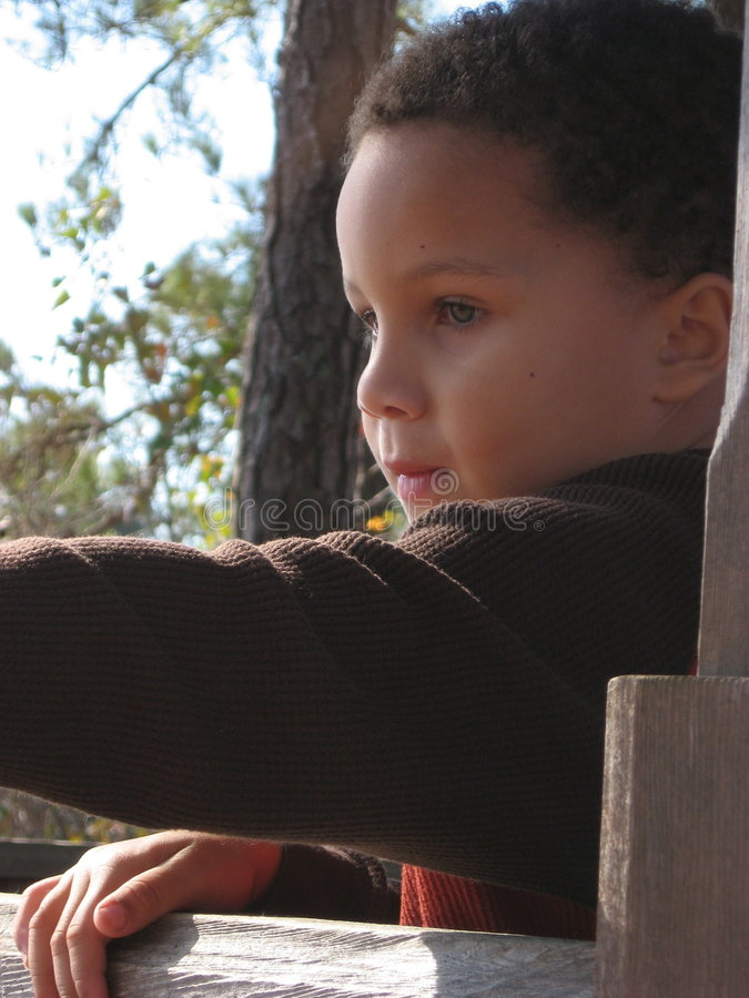 Download Boy Looking Over Fence stock photo. Image of look, looks - 1697482