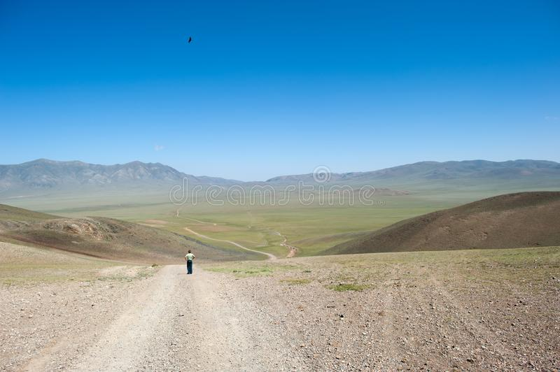 A boy looks at a steppe road through a valley in Mongolia, an eagle flies above him in the sky stock photo