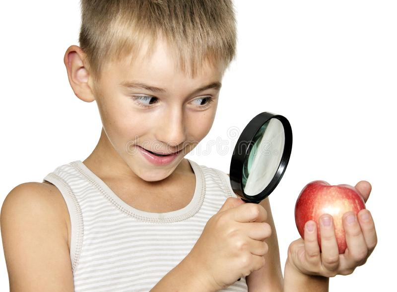 Boy with magnifying glass stock photography
