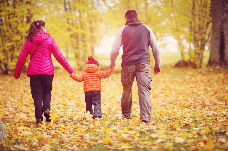 Boy with mother and father holding hands on the nature royalty free stock image