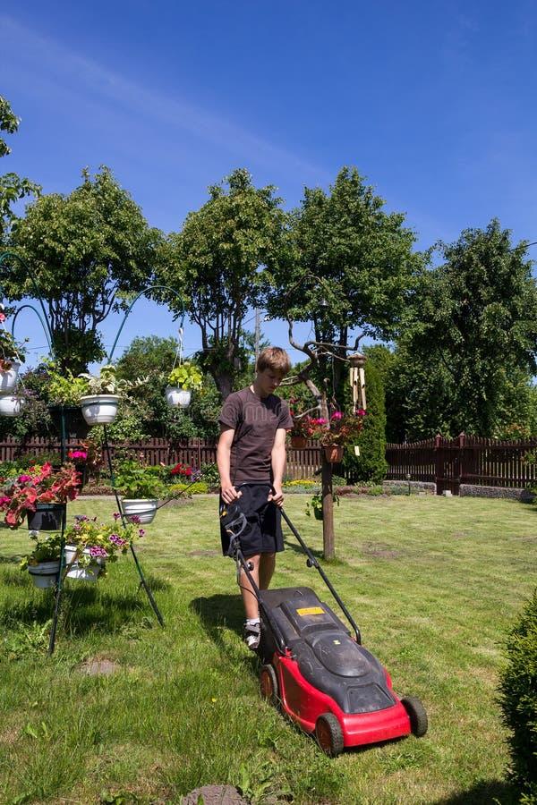 Boy mowing the garden royalty free stock photos