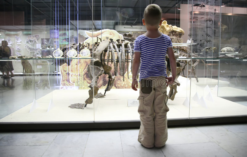 Boy In Museum Royalty Free Stock Photos