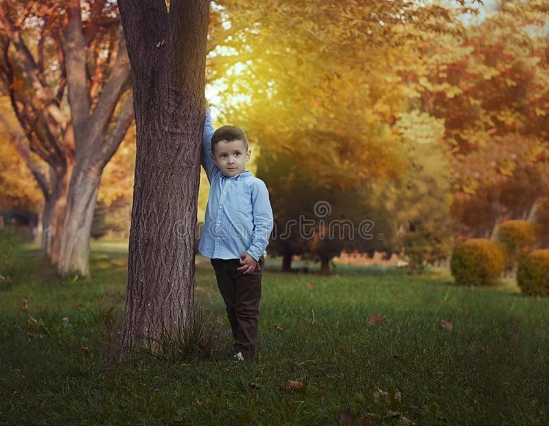 A boy in the nature stock photos