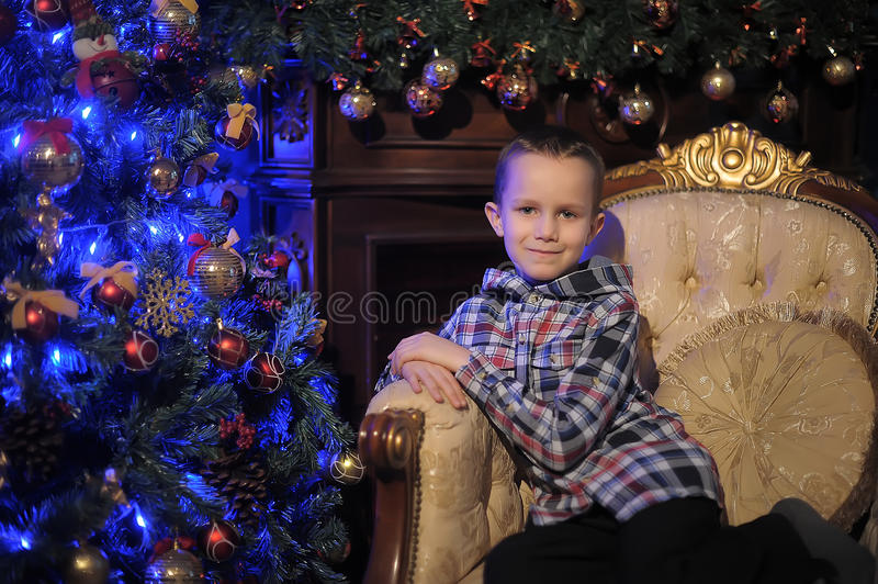 Boy near the Christmas tree stock image
