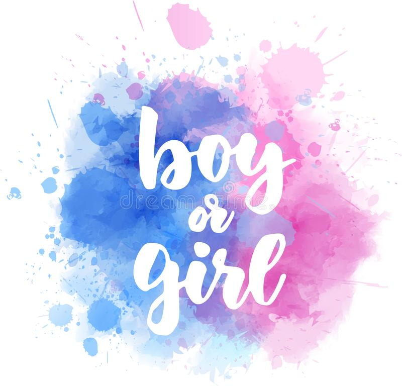 Free Boy Or Girl - Gender Reveal Stock Photo - 164446110