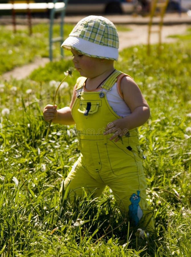 Download Boy in Park stock image. Image of innocent, child, walk - 2792979