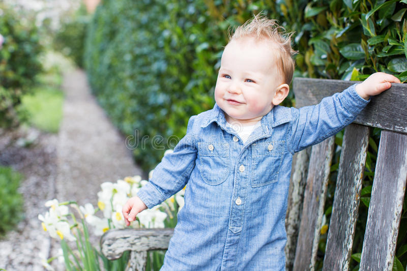 Boy in the park royalty free stock image
