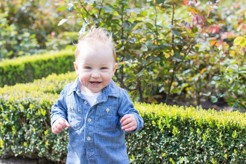Boy in the park stock photos