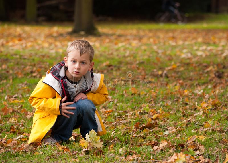 Boy in the park in Autumn, crouching over a twig, looking up at the camera. Young boy in yellow jacket crouching over an acorn branch in the park in the autumn stock photo