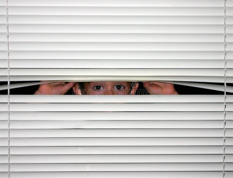 Boy Peeking out. Of blinds stock image