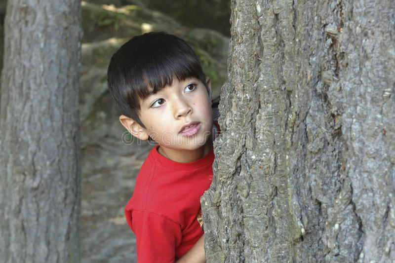 Boy peeks from behind tree. A small boy peeks out from behind a tree royalty free stock images