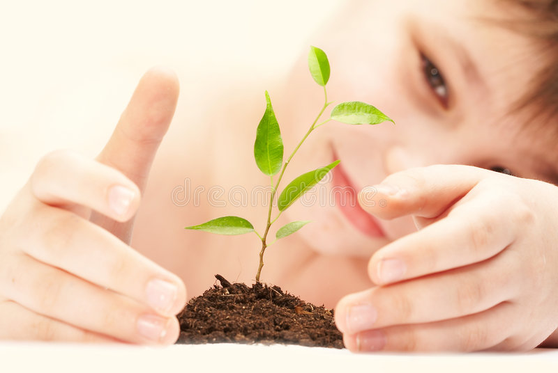 The boy and plant. stock photography
