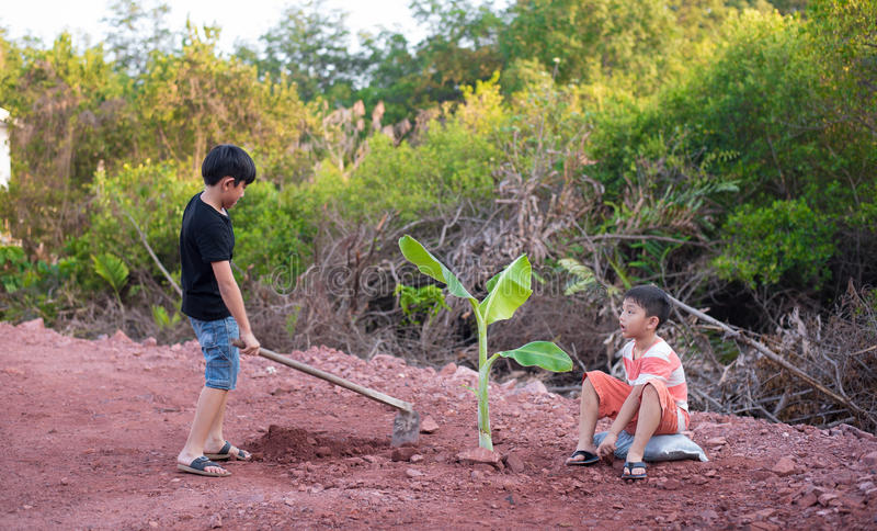 Boy plant tree stock photo image of brother gardening for Digging ground dream meaning
