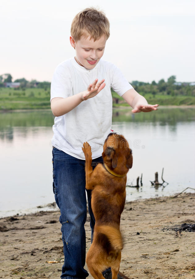 Download Boy Play On The Lake Bank With Dog Stock Image - Image: 20818087