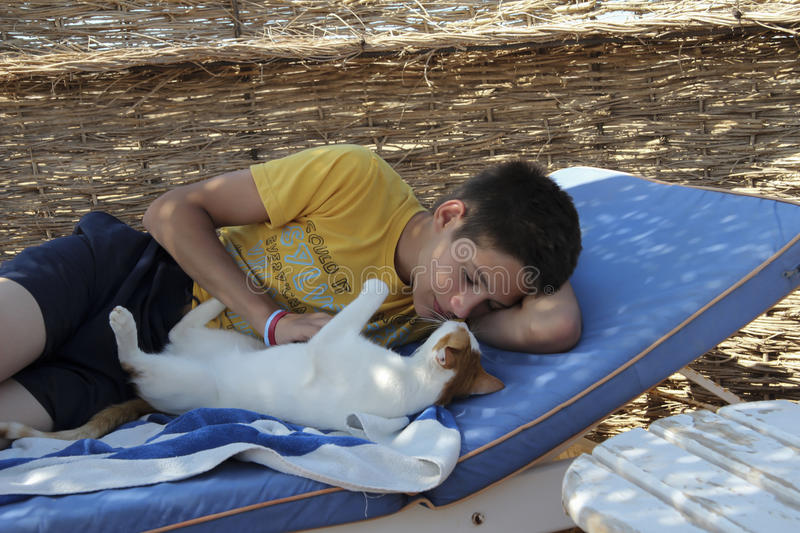 Boy playing with a cat on a sun lounger royalty free stock image