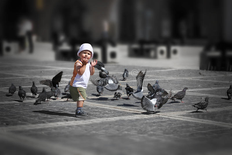 Boy playing in city center. Happy boy running among pigeons in city center royalty free stock photos
