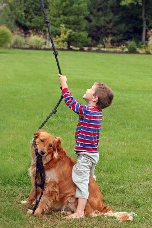 Boy Playing with Dog stock photos