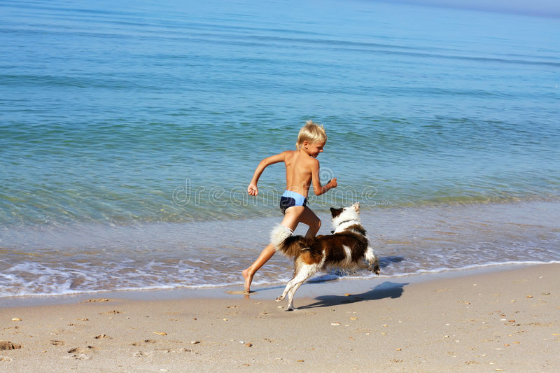 Download Boy playing dog stock image. Image of nature, canine, cheerful - 6370653