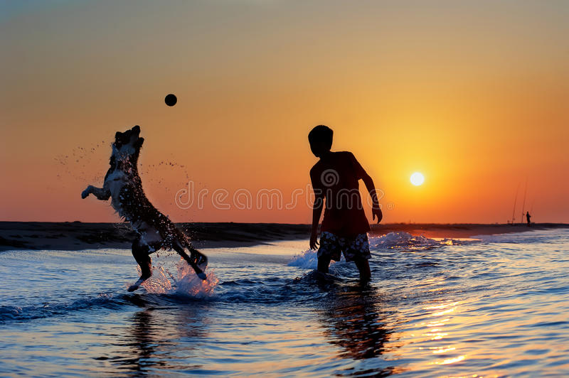 Boy playing with dog on the beach stock image