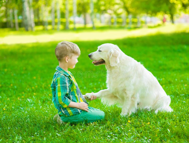 Boy playing with the dog on green grass royalty free stock photo