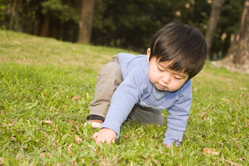 Boy playing grass stock photo
