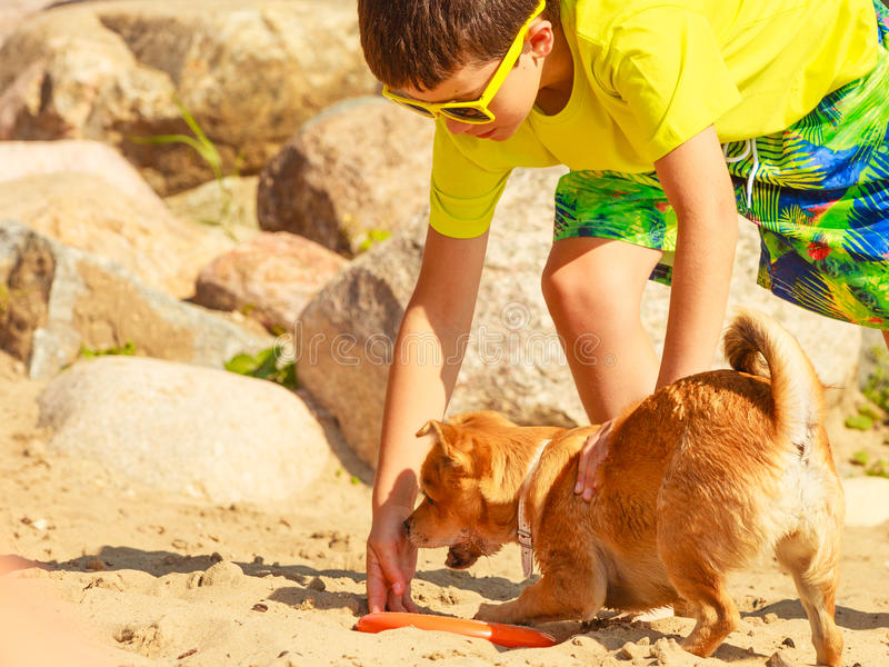 Boy playing with his dog. Connection between animals and kids concept. Sportive mixed race dog and boy kid playing together. Active child with puppy having fun royalty free stock photography