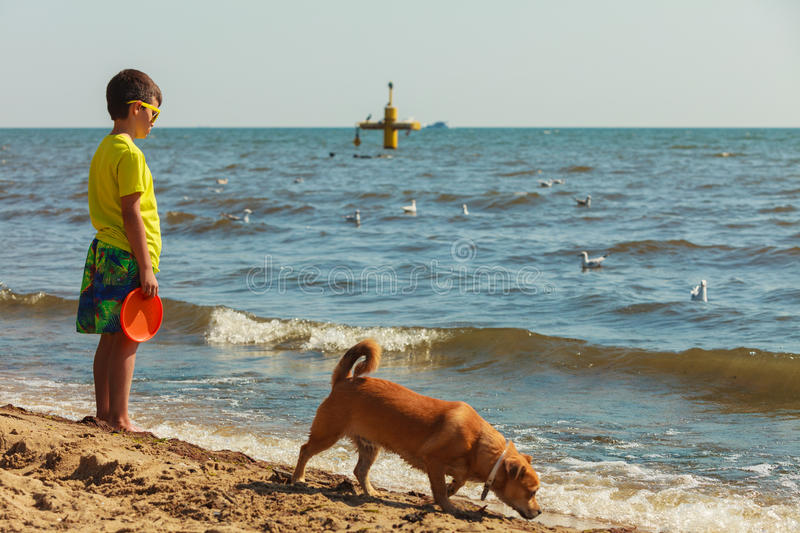 Boy playing with his dog. Connection between animals and kids concept. Sportive mixed race dog and boy kid playing together. Active child with puppy having fun stock photos
