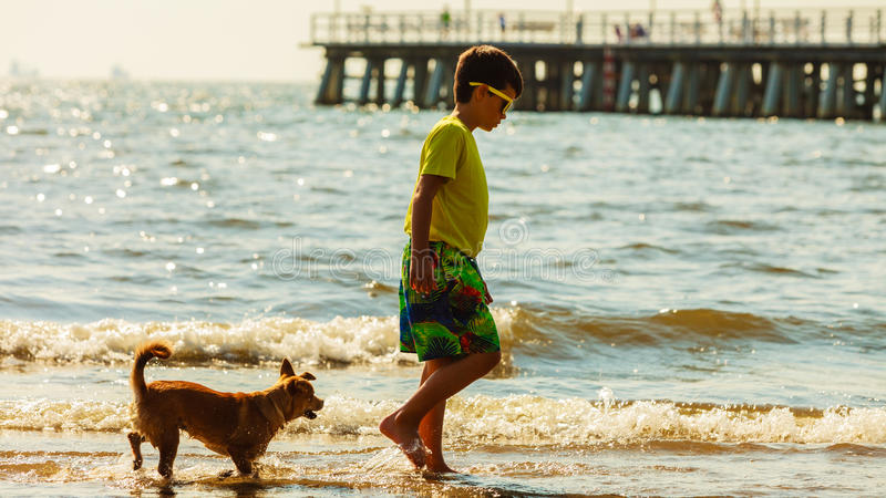 Boy playing with his dog. stock image