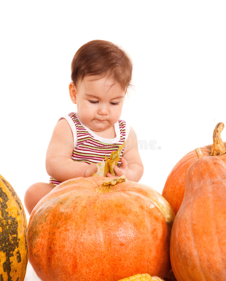 Download Boy among pumpkins stock photo. Image of portrait, healthy - 21618872