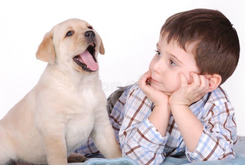 Boy and puppy. Boy and yelloow labrador retrievr puppy portraiy