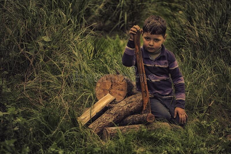 Boy In Purple Stripe Print Long Sleeve Shirt Holding Wooden Rod On Green Grass Field Free Public Domain Cc0 Image
