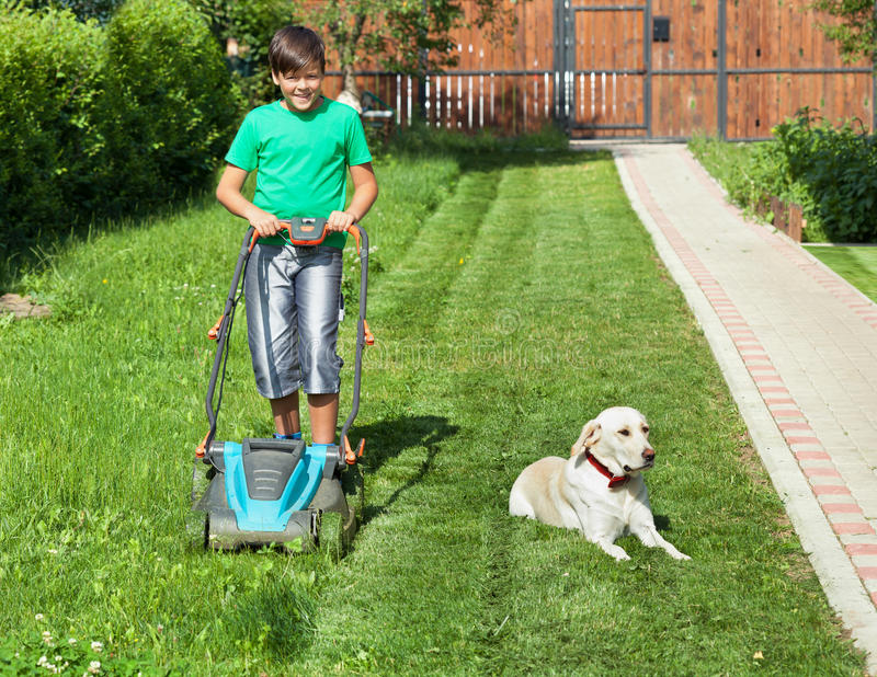 Boy pushing a lawnmower through the yard - accompanied by his do royalty free stock images