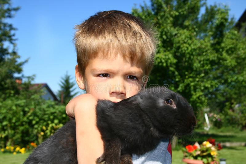 Boy and rabbit royalty free stock photography