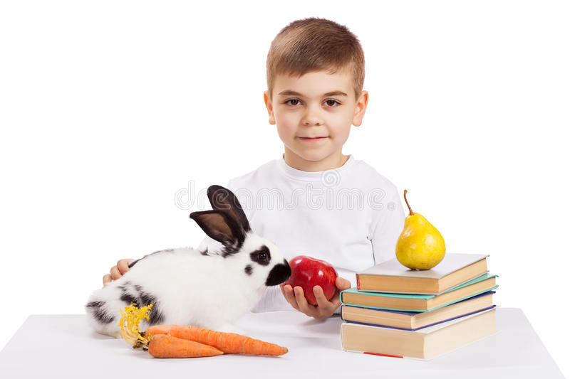 Boy with rabbit royalty free stock photography