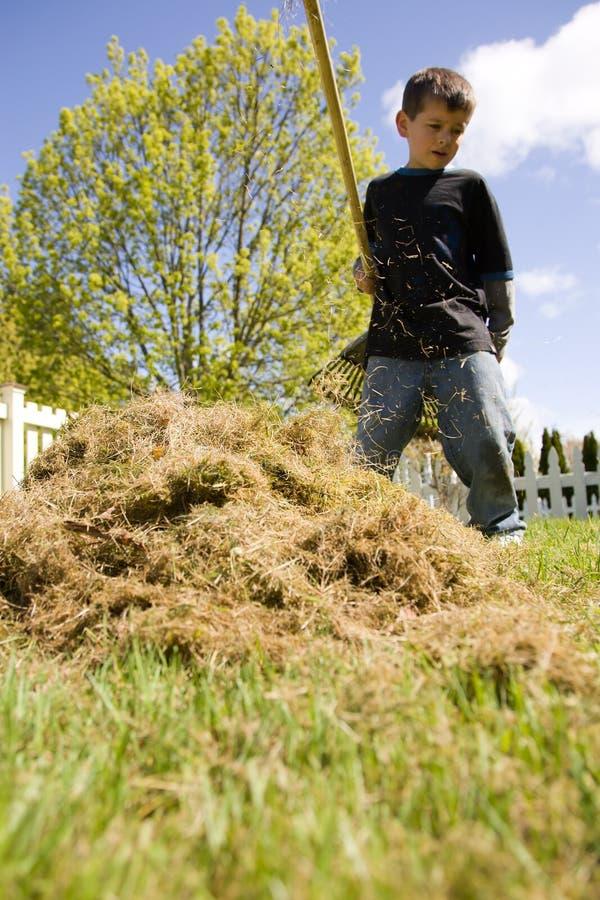 Boy raking grass royalty free stock photos