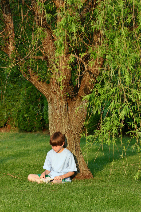 Free Boy Reading Stock Image - 1244431