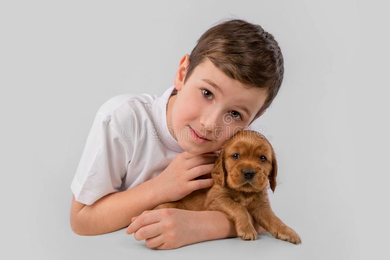 Boy with red puppy isolated on white background. Kid Pet Friendship. Cute child little boy with red puppy isolated on white background. Kid Pet Friendship. Space royalty free stock photos