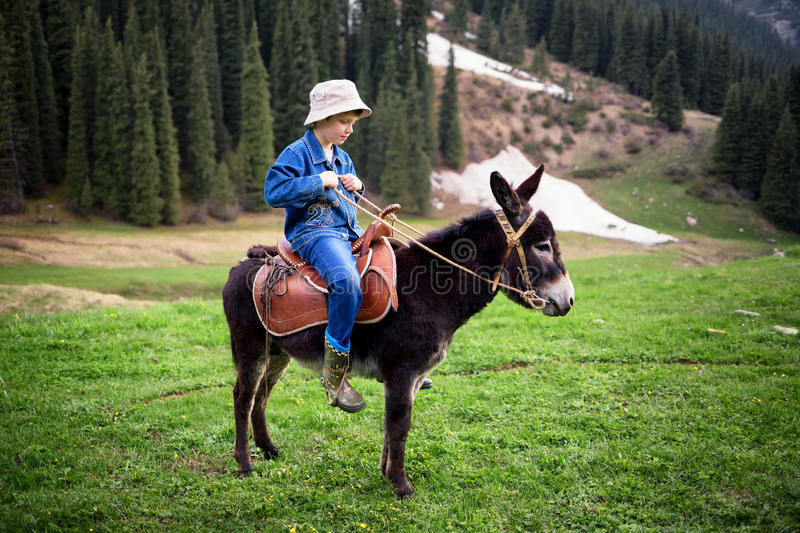 Boy rides a donkey stock images