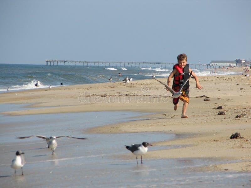 Boy running on beach royalty free stock photography