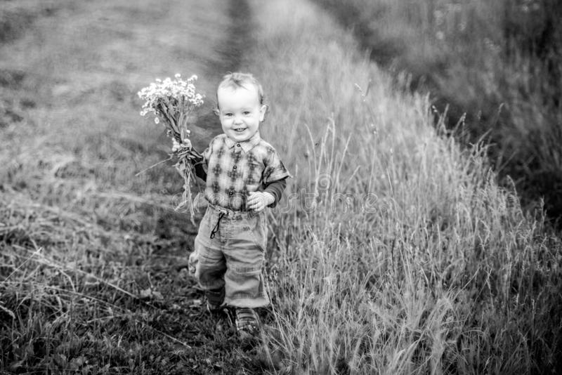 Boy running in wild field with flowers royalty free stock image