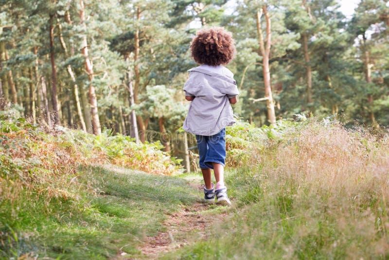Boy Running Through Woods stock image