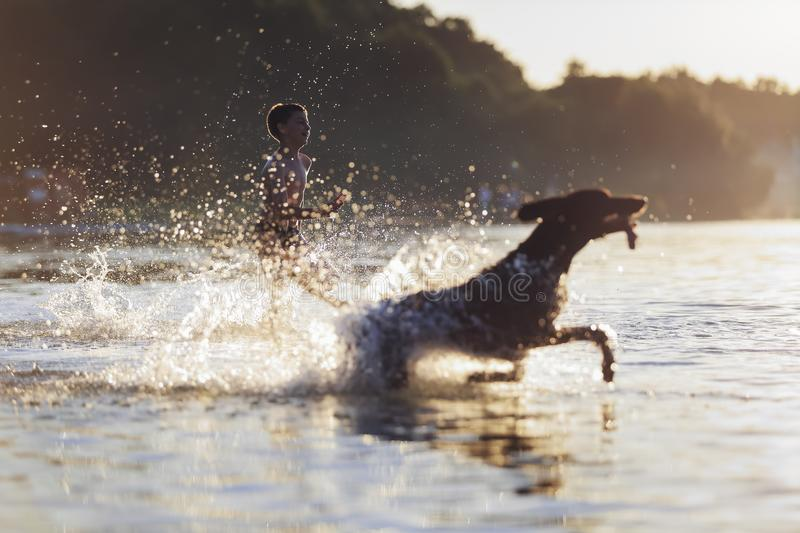 A boy runs with the dog in the lake, splashing the water around. Playful, happy childhood moments. Beautiful summer day. royalty free stock photo