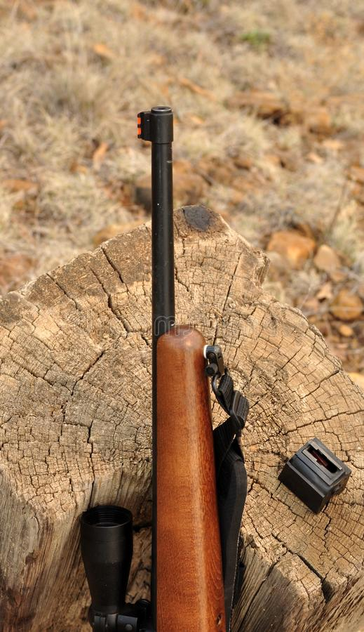 Download Riffle stock image. Image of aims, brown, farm, first - 30472551