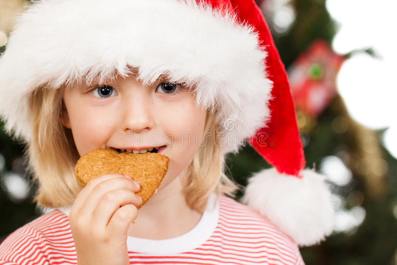 Boy in Santa hat eating gingerbread royalty free stock image