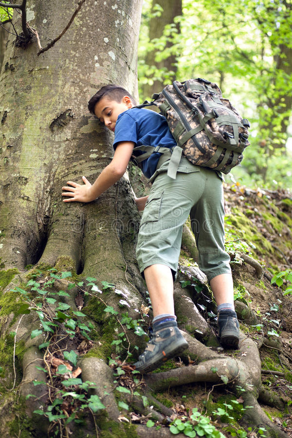 Boy scouts explore the beautiful forest. Kid in green forest playing,concept of kids vacations and travel royalty free stock images