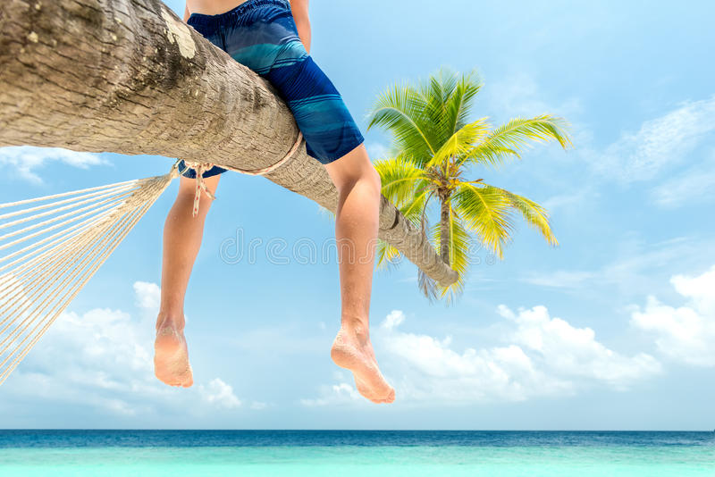 Boy sitting on a palm tree royalty free stock photography