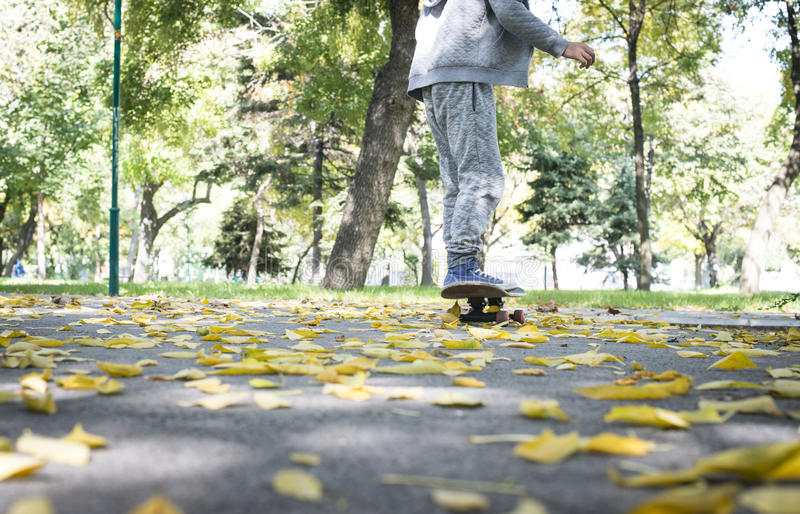 Boy with skateboard. In the park. Autumn leaves royalty free stock photos