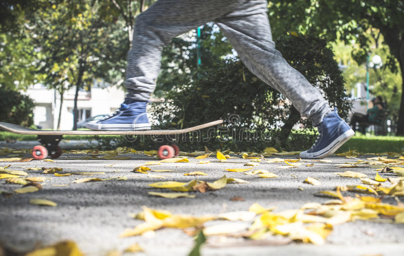 Boy with skateboard royalty free stock image